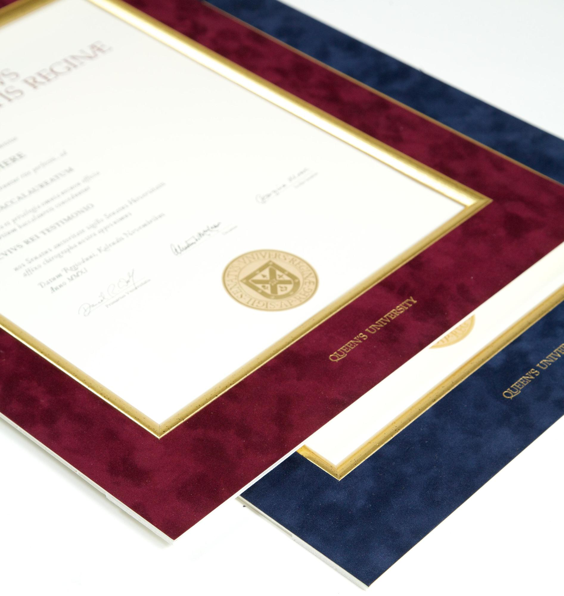 #6 Diplomat Satin Plus Frame with Suede Mat picture